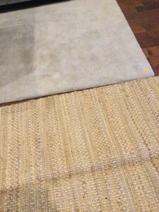 Small Area Rugs