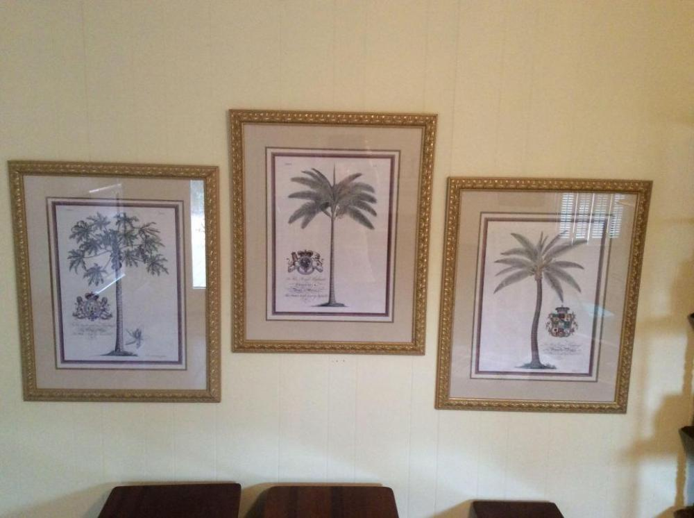 Lot 208 Of 274 Framed And Matted Palm Tree Prints